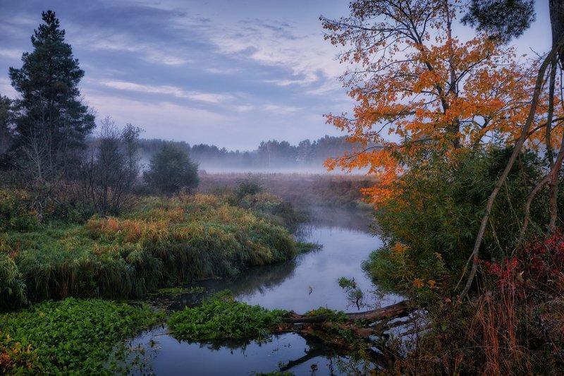 Осень первоначальная ... фото превью