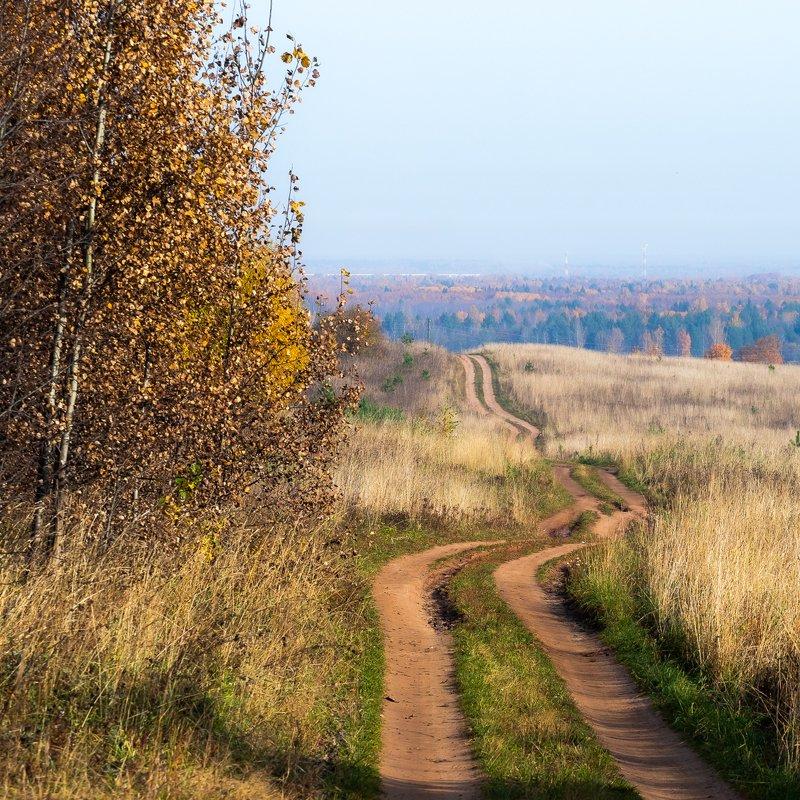 киров, вятка, осень, сентябрь, тепло, уютно. дорога, дорожка, лес, горизонт, береза, березка, деревня, kirov, vyatka, трава, поле, утро, ярко, изгиб Деревенская дорожкаphoto preview