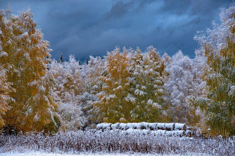 алтай. осень. горы. Между осенью и зимой фото превью