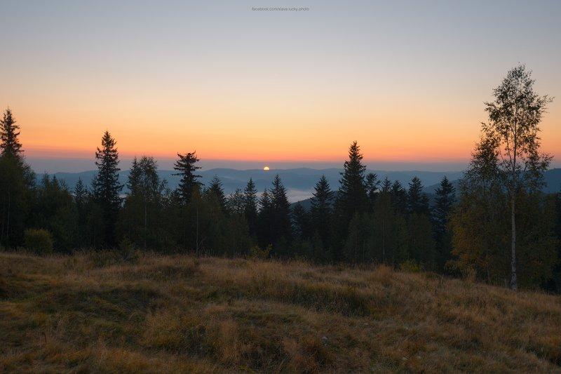рассвет, карпаты, лес, природа, горы, осень Встречая рассветphoto preview
