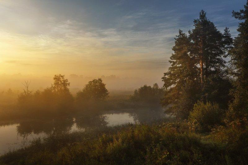 озеро, горы, лес, природа, закат, рассвет, красота, приключения, путешествие На заре я выйду в туманphoto preview