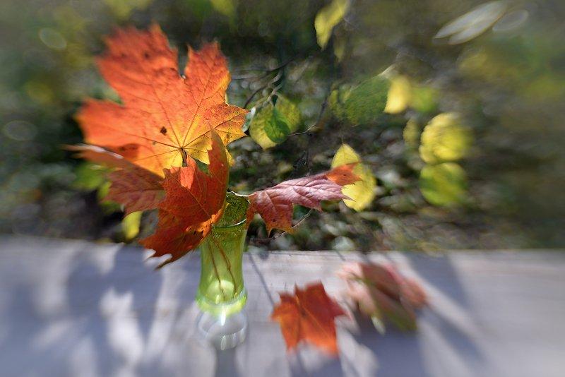 Солнечные брызги октябряphoto preview