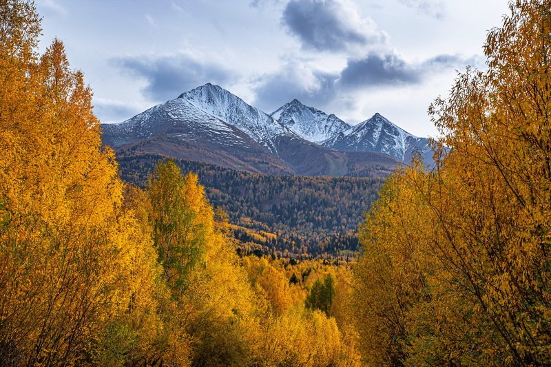 алтай. осень. горы. Три брата. фото превью