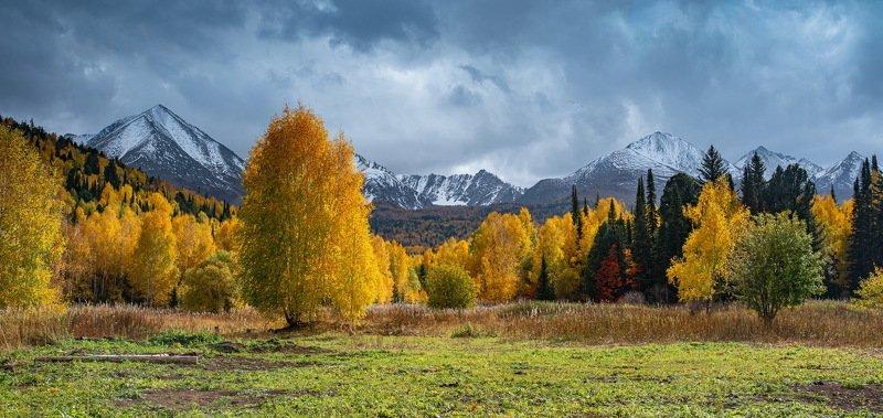 алтай. осень. горы. Золотая осень Алтая. фото превью