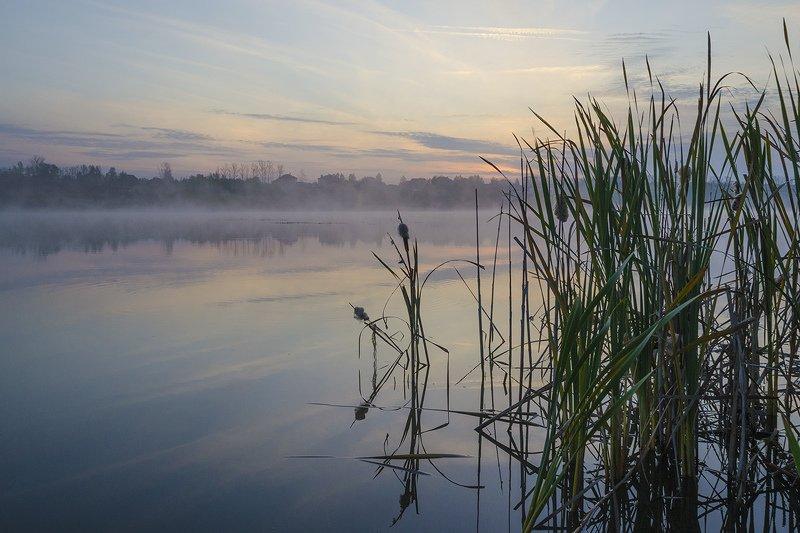 природа, утро, архангельское Предчувствие рассветаphoto preview