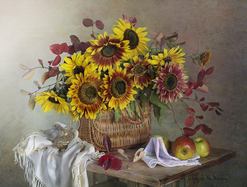 подсолнух,натюрморт,цветы,осень,вера павлухина, Подсолнухиphoto preview