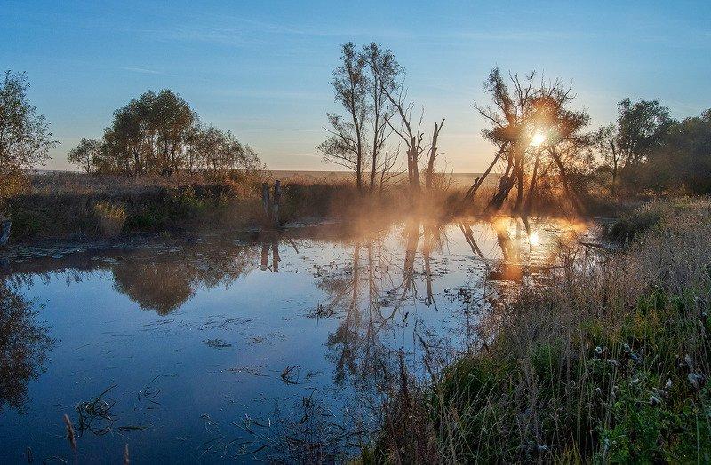 утро, рассвет, лето, солнце, осень, туман, река, дерево ***photo preview