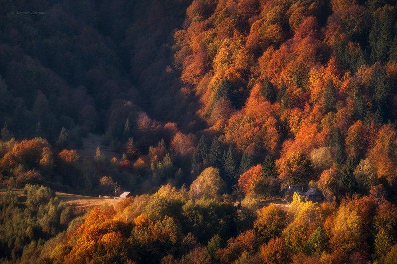 пейзаж,осень,карпаты Настроение осени...photo preview