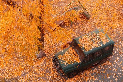 Осень в Омске