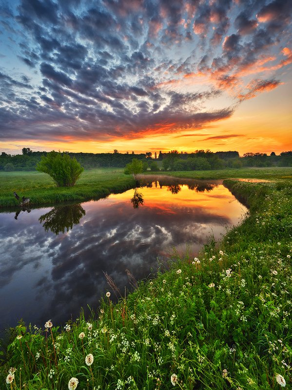 весенний рассветphoto preview