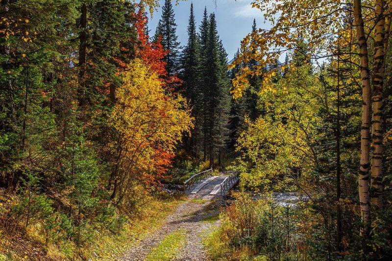 алтай. осень. горы. Осень на Алтае. фото превью