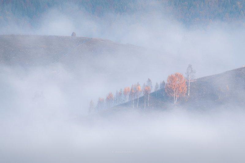 карпаты, осень, пейзаж, рассвет, туман Осенняя романтика...photo preview