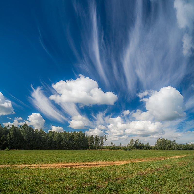 облака, природа, пейзаж, лето, поле, трава, дорога, тепло, август, лес, дерево, ель Облакаphoto preview