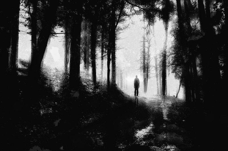 forest, man, trees, silhouette, loneliness, road, sadness, Black and white, лес, человек, деревья, силуэт, одиночество, дорога, грусть, Черное и белое Loneliest Road That I Knowphoto preview