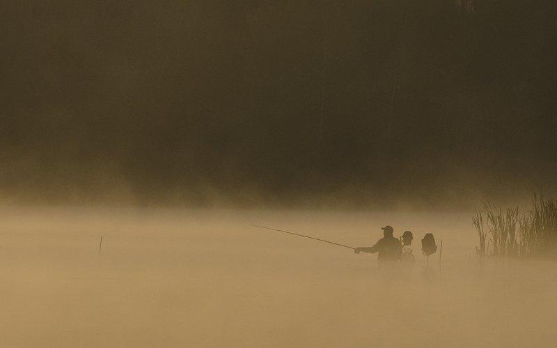 утро, туман, рыбалка, взабродку, рыбак, архангельское Затерянный в жёлтом тумане октябряphoto preview