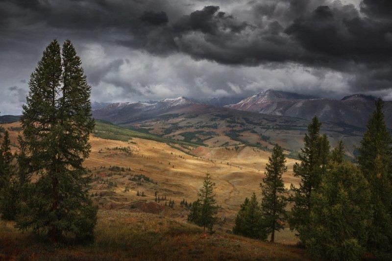озеро, горы, лес, природа, закат, рассвет, красота, приключения, путешествие, облака, урал Осенние краски Курайской степиphoto preview