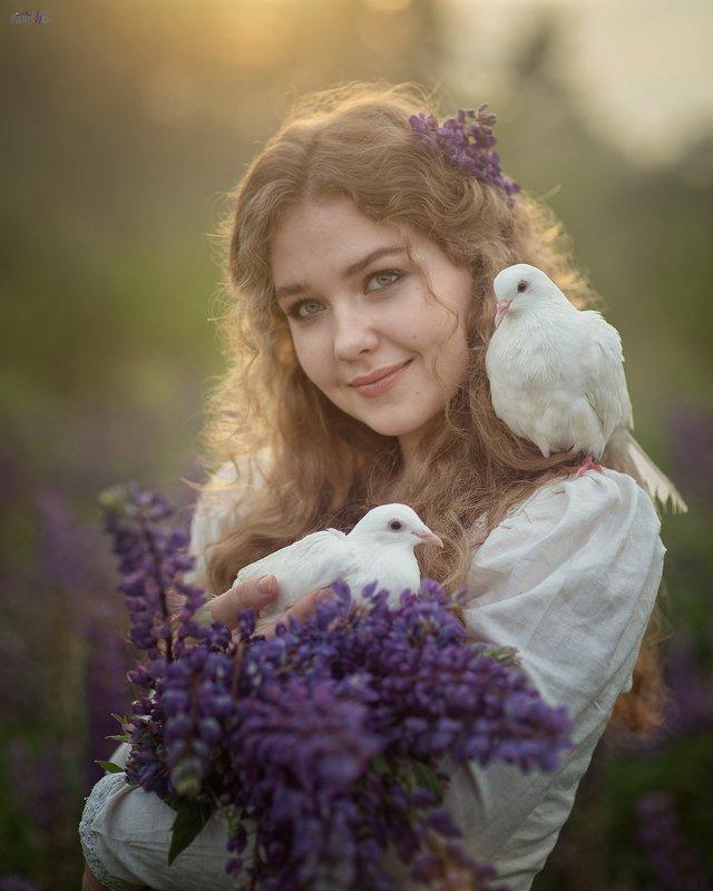 девушка, цветы, закат, поле, люпины, лето, конровичок, красота, сказка, портрет, женский портрет, голуби photo preview