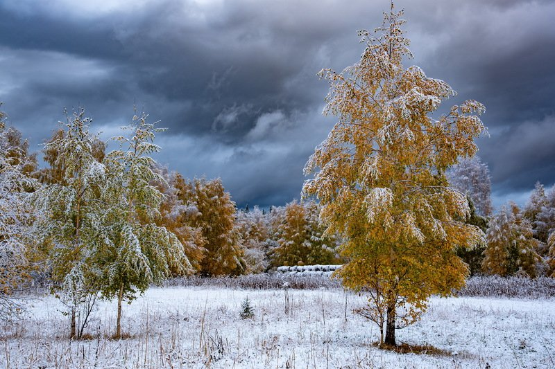 алтай. осень. горы. Первый снег Алтая. фото превью