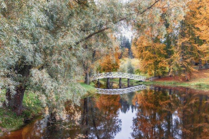 михайловское, пушкинские горы, осень, пушкинские места Михайловскоеphoto preview