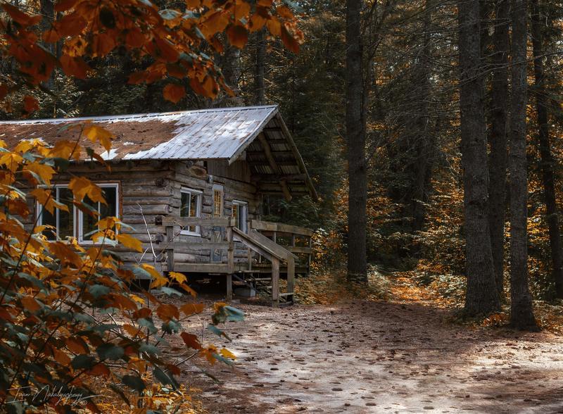 лес хижина природа отдых озеро осень тепло бабье лето Хижина лесная.photo preview