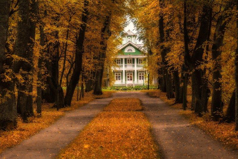 Осень в старой усадьбеphoto preview