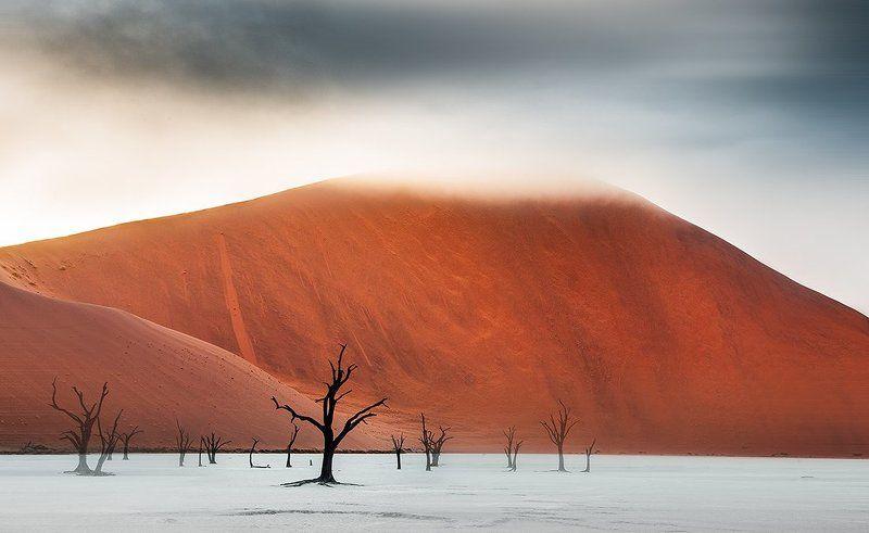 намибия, пустыня Призраки Намибphoto preview