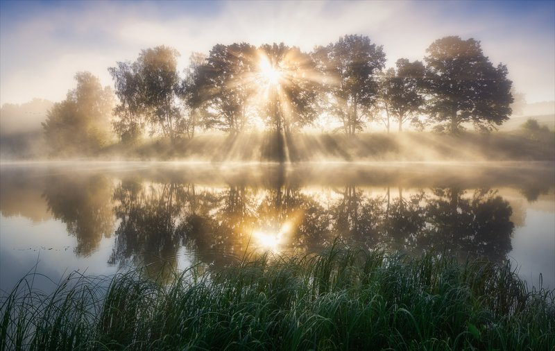 Свет утра золотого.photo preview