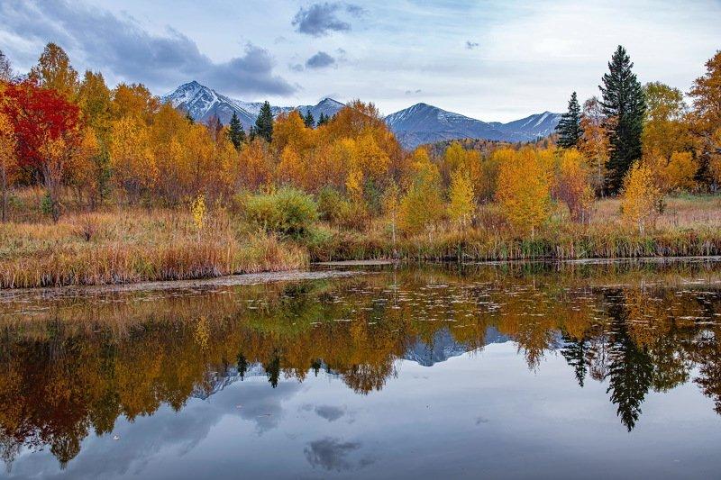 алтай. осень. горы. Отражение осени. фото превью