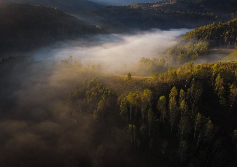 mountains, romania, autumn, sunrise, landscape, nature, travel, trees, fog, misty, light Autumn is Comingphoto preview