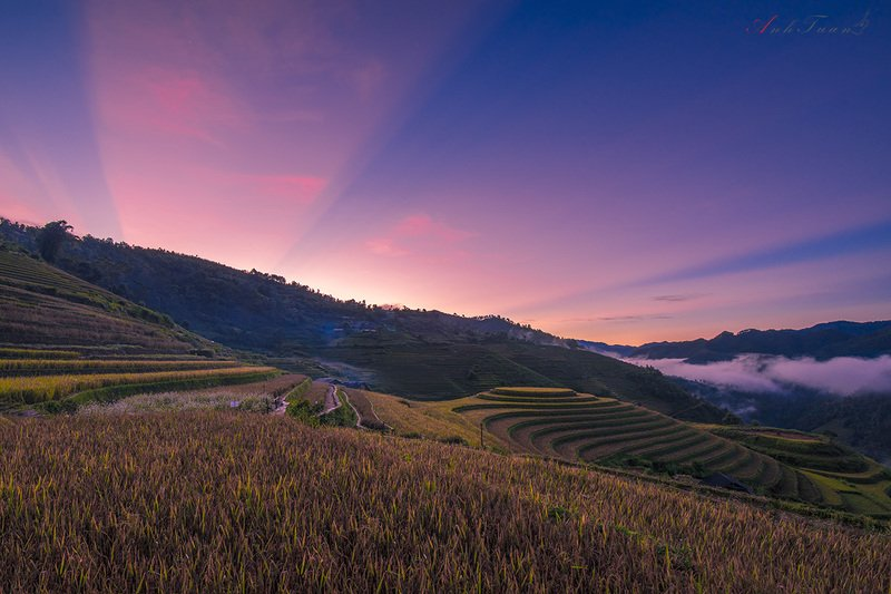 #sellingphoto #landscape.#sunset.#mucangchai La Pan Tanphoto preview