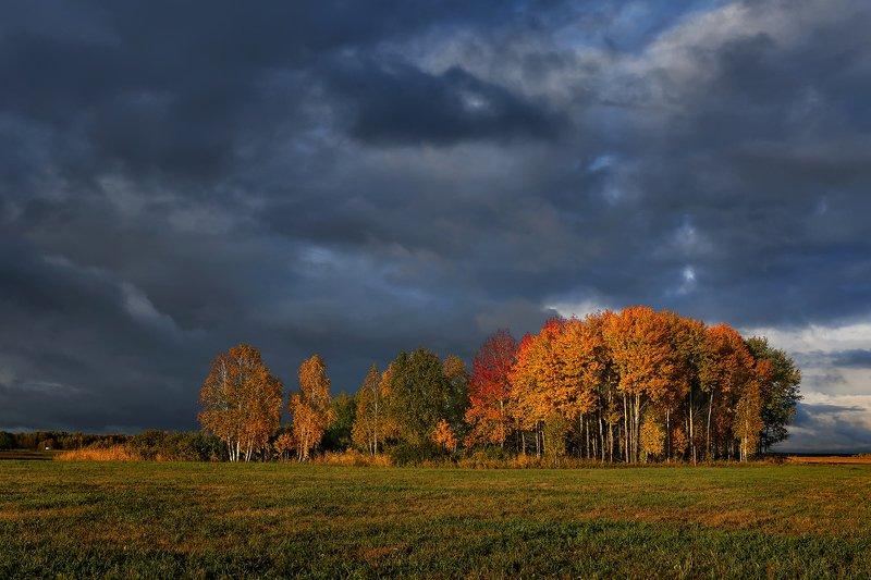 природа, пейзаж, осень, гроза, тучи, вечер, закат, лес Причуды осениphoto preview