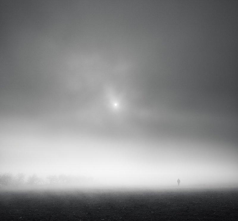 Landscape,fog,mood Jing Jang Daysphoto preview