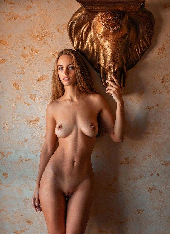 https://www.patreon.com/gromova_ok Me and my elephantphoto preview