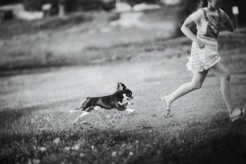 лето дети собака монохром жанр Беззаботностьphoto preview