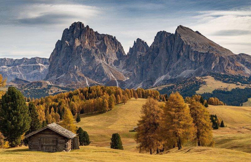 доломиты, осень Пейзажи Alpe di Suisuphoto preview