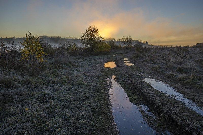 утро, рассвет, дорога, архангельское Дорога после ночного дождя. Рассветphoto preview