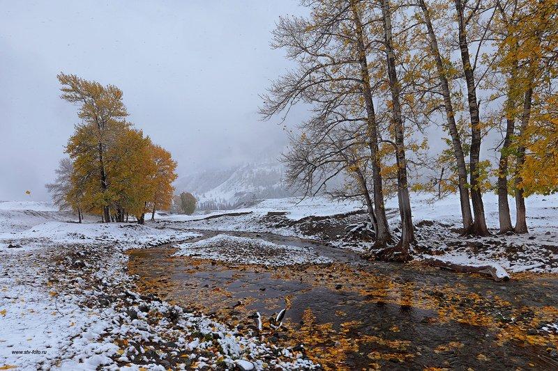 природа, пейзаж, горы, осень, снег, метель, река Сентябрьская метельphoto preview