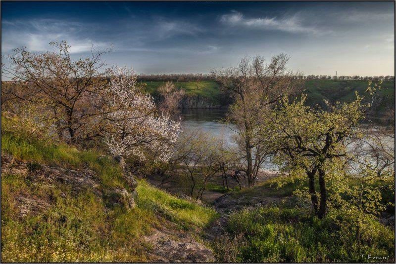 Весна на Хортицеphoto preview
