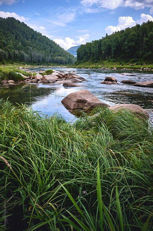 река, мрас-су, лес, тайга, горы, скалы, цапли, сосны * * *photo preview