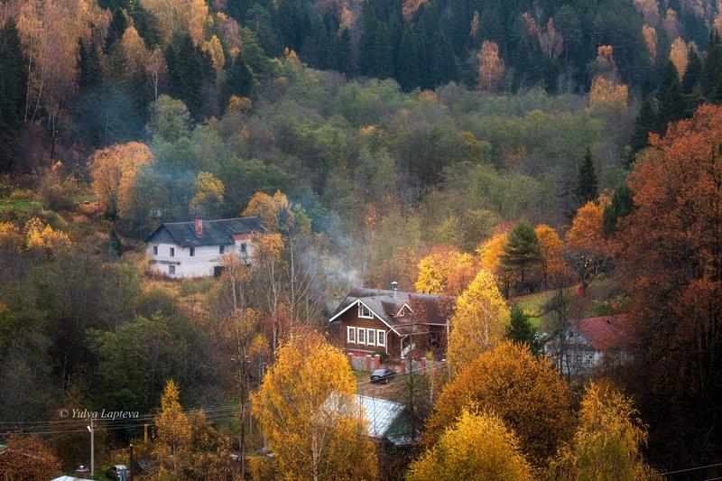 плёс,россия,золотая осень красота \