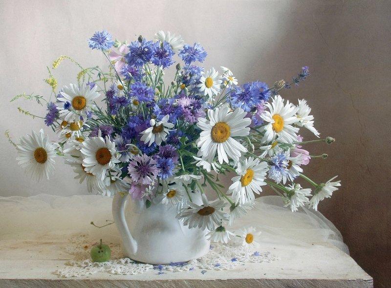 лето,  цветы,васильки, ромашки, натюрморт, марина филатова ***photo preview
