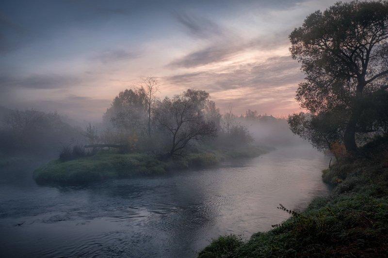 истра, река, островок, природа, пейзаж, осень, октябрь, холод Остатки октябряphoto preview