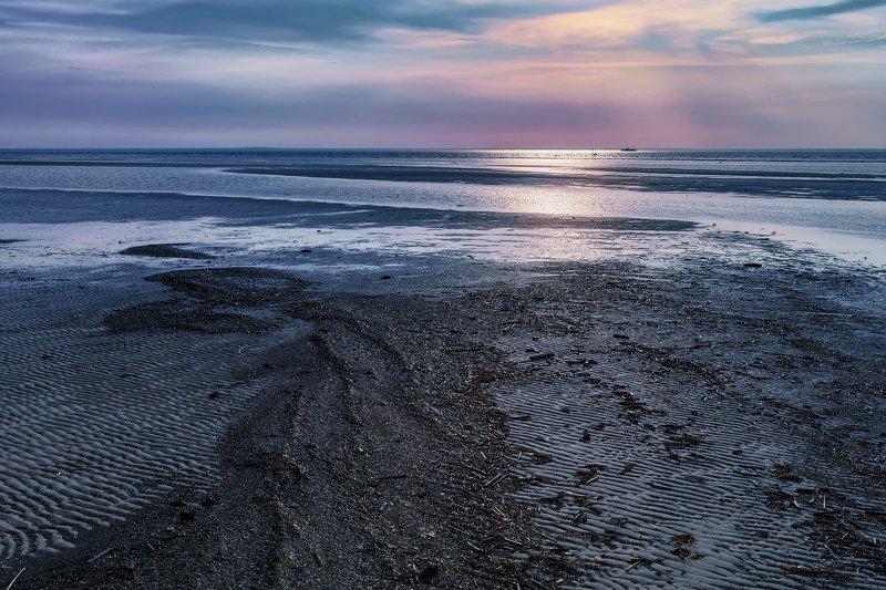 море, белое, берег, отлив, водоросли, вечер, закат, вода, облака Вечер у моряphoto preview