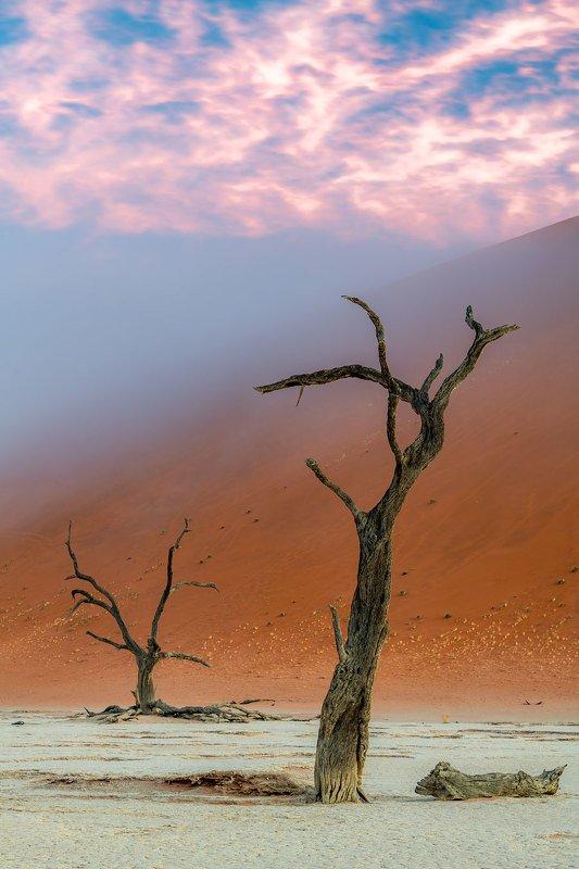 Радужное сияние и туман.photo preview