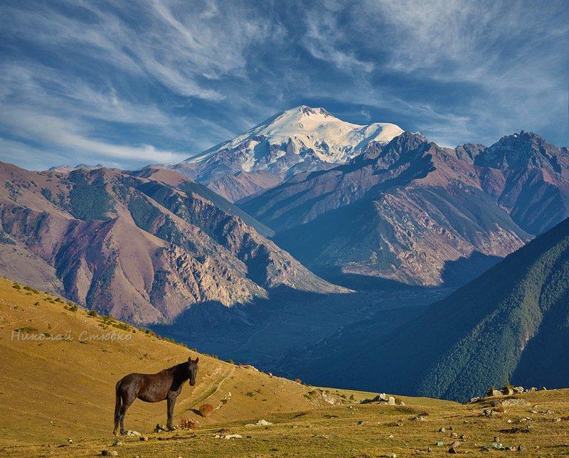 конь, кавказ, горы, осень, эльбрус Дайте мне волю...photo preview