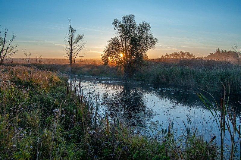 утро, рассвет, река, солнце ***photo preview