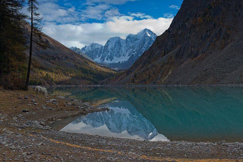 горы, алтай, озеро, шавлинское, река, шавла, северо-чуйский, хребет только мы с конемphoto preview