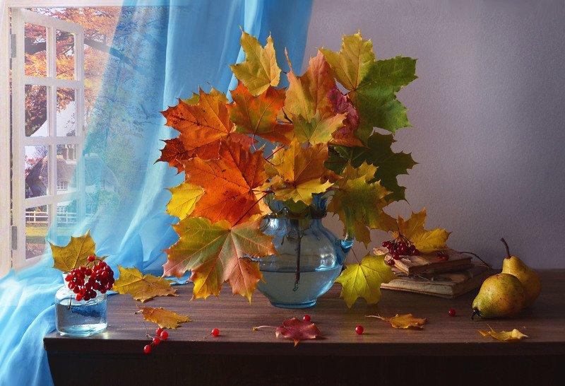 still life, натюрморт, фото натюрморт, осень, октябрь, кленовые листья, калина, настроение ...и акварельных красок нежный ветер...photo preview