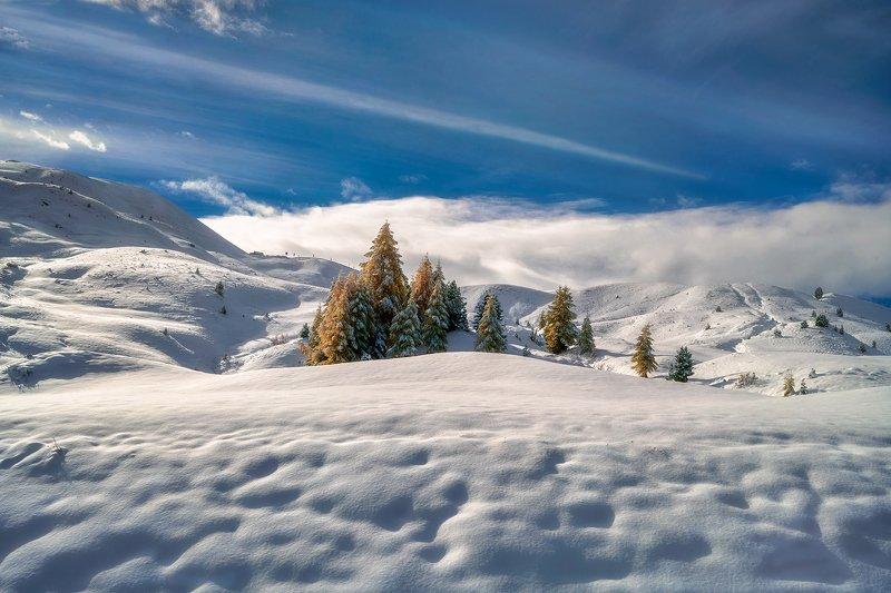 landscape Winterphoto preview