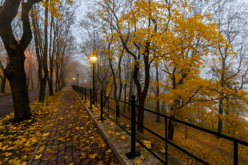Осенняя Нарва.photo preview